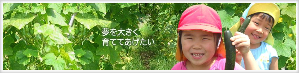 キューリ畑の子どもの画像